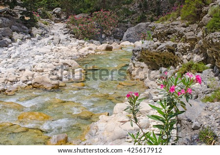 Creek in Samaria Gorge on Crete, Greece - stock photo
