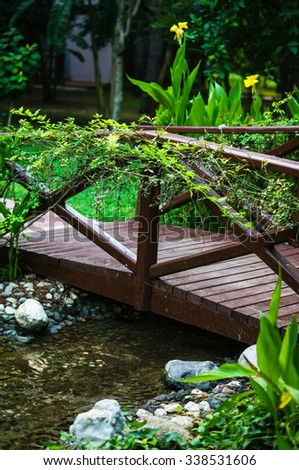 Creek in the tropical carden with little wooden bridge