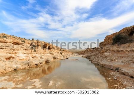 Creek near canyon Ein Avdat in Negev desert