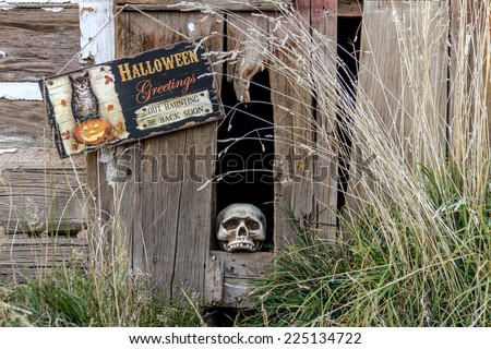 Creepy Halloween skull in old abandoned wood building with Halloween greetings sign - stock photo
