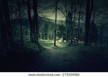 Creepy house in the middle of a dark forest - stock photo