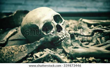 Creepy human skull in an open grave surrounded by the bones of the skeleton in a macabre background for horror, Halloween or death themed concepts - stock photo