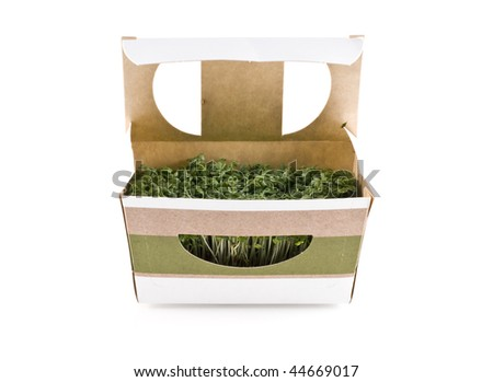 Cress in a box, isolated on white.