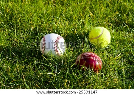 Cricket ball baseball tennis ball - stock photo