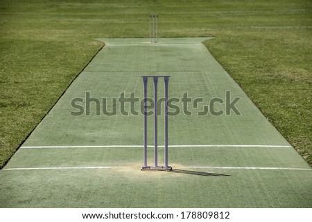 Cricket Pitch - stock photo