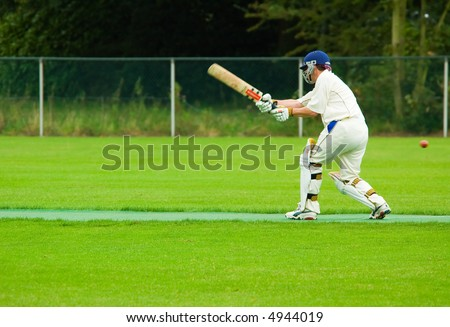 cricket player in action - stock photo