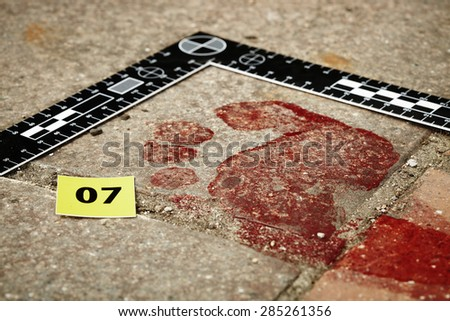 Crime scene investigation - bloody footprint - stock photo