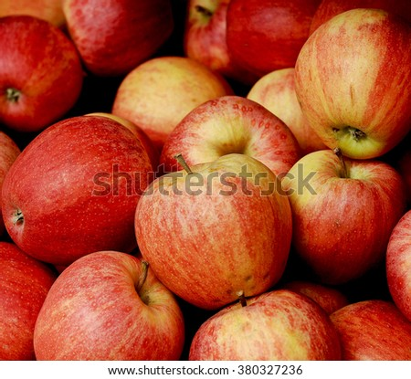 Crisp and juicy organic apples on display at the farmers market.  - stock photo