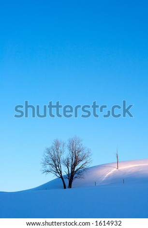 Crisp morning winter landscape - stock photo