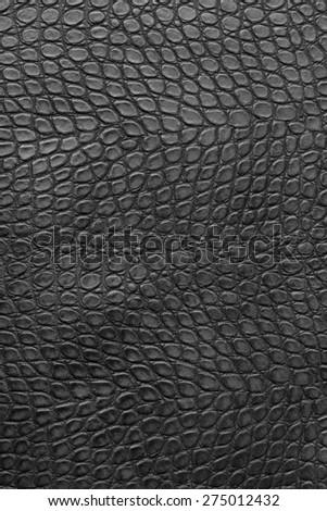 crocodile leather - stock photo
