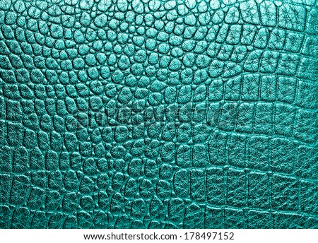 Crocodile leather, can use as background  - stock photo