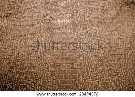 Crocodile leather skin imitation (alligator) - stock photo