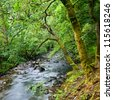 Croe Waret river at Ardgartan in Scotland - stock photo