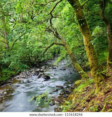 Croe Waret river at Ardgartan in Scotland - stock photo