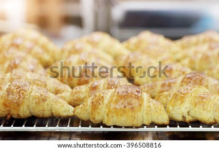 croissants out of oven, kitchen background. - stock photo