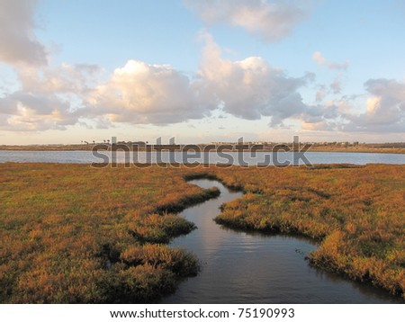 Crooked inlet in Bolsa Chica Ecological Reserve, Huntington Beach, CA - stock photo
