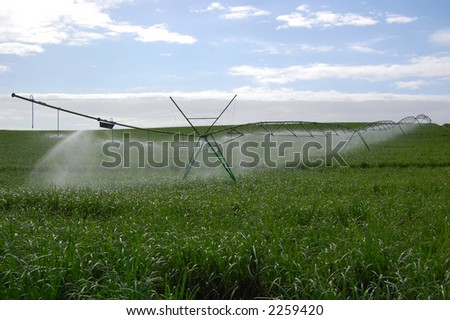 Crop irrigation 2 - stock photo