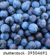 Crop of autumn sloes. Background. Blackthorn - stock photo