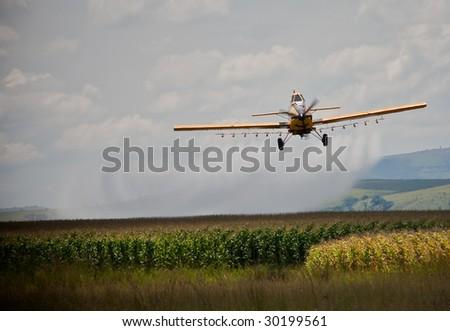 crop sprayer in action over corn field - stock photo