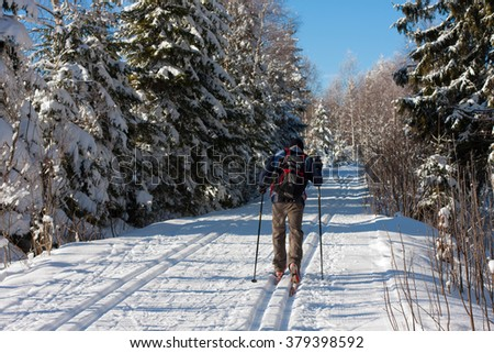 Cross-country skiing in the Bavarian forest - stock photo
