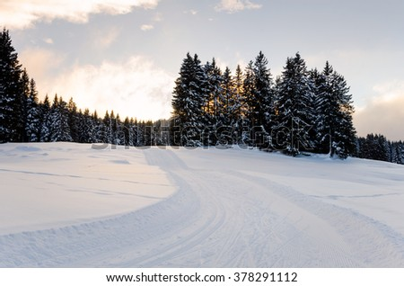 Cross-country Skiing Track at Sunset