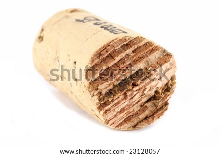 Cross section of a cork isolated on white