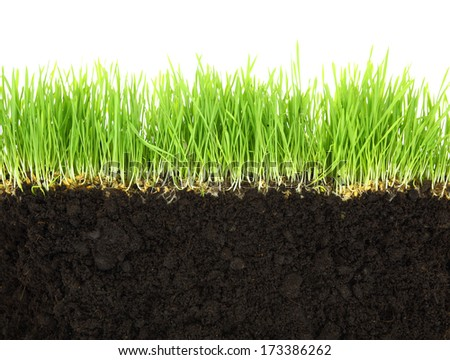 Cross-section of soil and grass isolated on white background  - stock photo