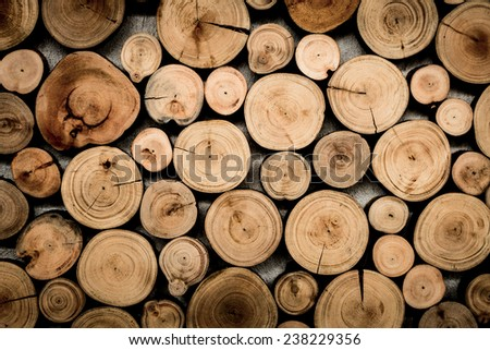 Cross Sectional Wooden Background - stock photo