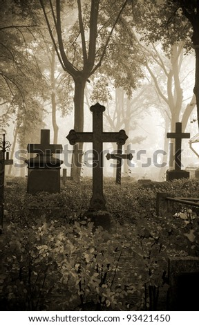 crosses at the cemetery in fog - stock photo