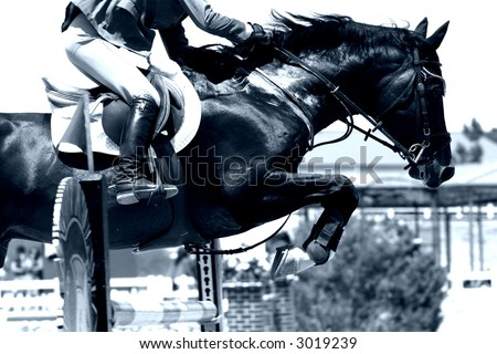 Crossing The Hurdle – Equestrian Theme (high contrast blue tone, shallow focus) - stock photo