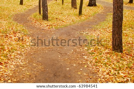 crossroads in the park - stock photo