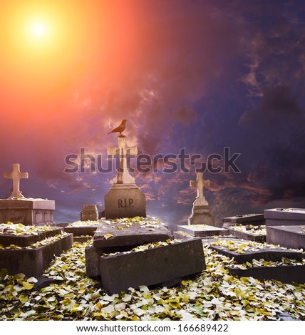 Crow sitting on a gravestone in cemetery - stock photo