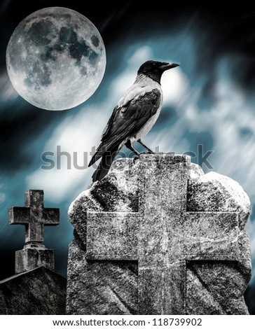 Crow sitting on a gravestone in moonlight at cemetery - stock photo