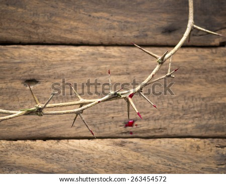 Crown of thorns with blood on a old wooden background. Focus on highest thorn on blurred The other thorn and wooden background. Forgiveness, Thanksgiving, Christmas, Redeemer, Eucharist concept. - stock photo