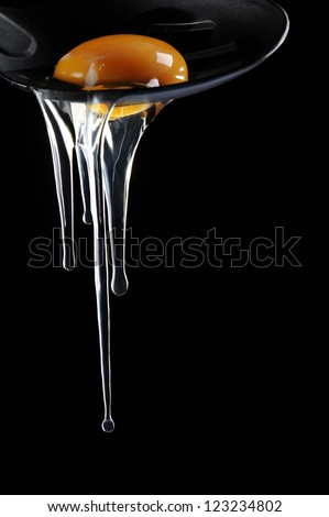 crude egg - stock photo