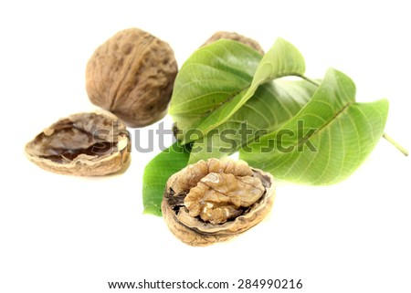 crunchy walnuts with walnut leaves on a bright background - stock photo