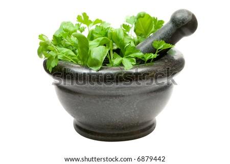 Crushing Fresh Herbs - stock photo