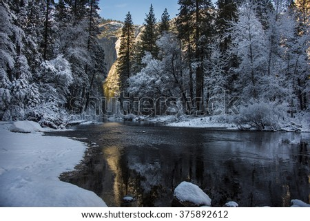 Crystal Clear Forest in Yosemite Valley - stock photo