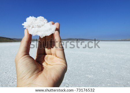Crystal of salt in hand, on background of salt lake - stock photo