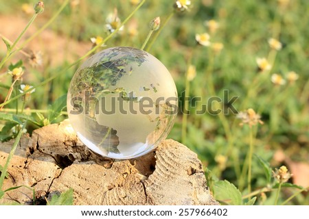 Crystal World Europe Zone on stump with little flower blur background.  - stock photo