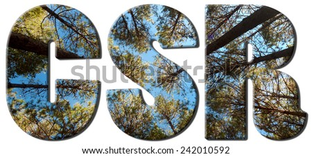 CSR text filled with an image of pine trees piercing upward to the sky - stock photo