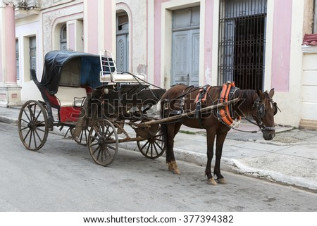 Cuba, Cardenas, Coach with horse - stock photo