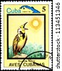 CUBA - CIRCA 1983:A Postage Stamp Shows Sturnella Magna, from Series Cuban Birds, circa 1983 - stock photo
