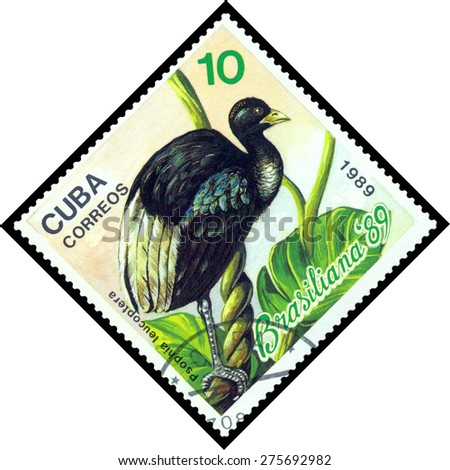CUBA - CIRCA 1989: A stamp printed by Cuba, shows  bird  Psopnia Leucoptera, Exotic Birds, Brasiliana 89, circa 1989  - stock photo