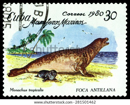 CUBA - CIRCA 1980: a stamp printed by Cuba shows Caribbean Monk Seal   ,  Marine  Mammals,  circa 1980 - stock photo