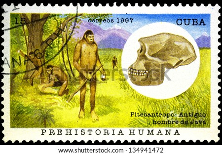 "CUBA - CIRCA 1997: A stamp printed in Cuba, shows ancient man and his skull, with inscription ""Pithecanthropus (Java man)"", from the series ""Hominids"", circa 1997"
