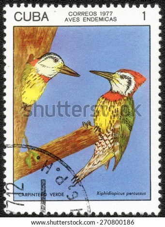 CUBA - CIRCA 1977: A stamp printed in Cuba shows bird Woodpecker Series , series Cuban birds, circa 1977   - stock photo
