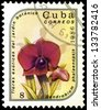 "CUBA - CIRCA 1986: A stamp printed in Cuba shows Dendrobium phalaenopsis Flower, with the same inscription, from the series ""Exotic Flowers from botanical garden"", circa 1986 - stock photo"
