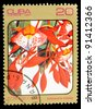 "CUBA - CIRCA 1984: A Stamp printed in CUBA shows image of a Amherstia nobilis, from the series ""Caribbean Flowers"", circa 1984 - stock photo"