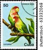 "CUBA - CIRCA 1984: A Stamp printed in CUBA shows image of a Parrots  from the series ""Fauna"", circa 1984 - stock photo"